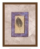 Ash in Lavender Fine Art Print