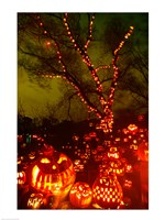 Jack o' lanterns lit up at night, Roger Williams Park Zoo, Providence, Rhode Island, USA Fine Art Print