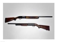 Close-up of a Beretta 20-gauge and an Ithaca 12-gauge shotgun Fine Art Print