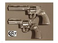 Colt-Pythons Fine Art Print