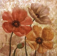 Poppy Allure I Fine Art Print