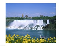 Flowers in front of a waterfall, American Falls, Niagara Falls, New York, USA Fine Art Print