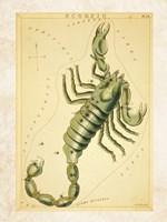 Scorpio Zodiac Sign Fine Art Print
