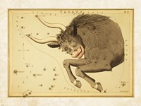 Taurus Zodiac Sign Fine Art Print