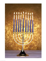 Close-up of lit candles on a menorah Fine Art Print