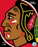 Chicago Blackhawks 2011 Team Logo Fine Art Print