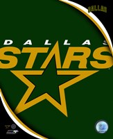 Dallas Stars 2011 Team Logo Framed Print