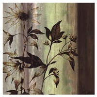Painted Botanicals I Fine Art Print