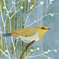 Blue Sky Songbird I Framed Print