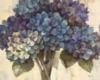 Turquoise Hydrangea Fine Art Print
