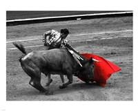 Red Matador III Fine Art Print