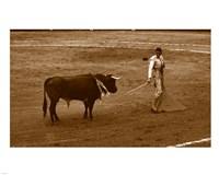 Matador and Bull Fine Art Print