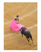 Matador Bullfight Fine Art Print