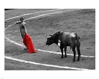 Red Matador I Fine Art Print