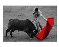 Red Matador II Framed Print