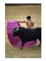 A matador and a bull at a Bullfight, Spain Fine Art Print