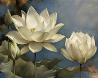 Lotus I Framed Print