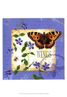 Butterfly Meadow II Fine Art Print