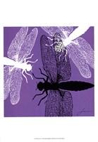 Pop Fly V Fine Art Print