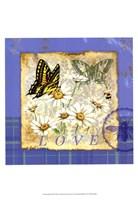 Papillion Plaid I Fine Art Print