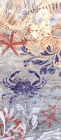 Floral Frenzy Coastal VII Fine Art Print