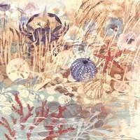Floral Frenzy Coastal II Fine Art Print