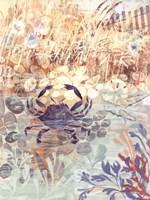 Floral Frenzy Coastal III Framed Print