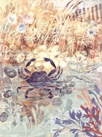 Floral Frenzy Coastal III Fine Art Print