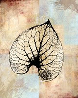 Choc Spice Skel Leaf IV Framed Print