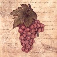 Grapes II Framed Print