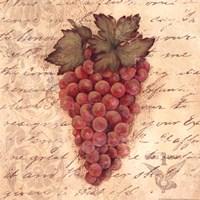Grapes III Fine Art Print