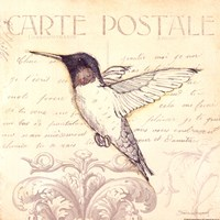 Bird III Fine Art Print