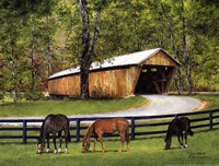 Old Covered Bridge Fine Art Print