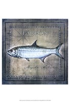 Ocean Fish X Framed Print