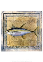 Ocean Fish XII Framed Print
