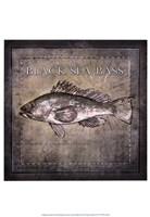 Ocean Fish II Framed Print