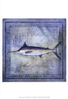 Ocean Fish V Framed Print