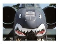Flying Tigers II Fine Art Print