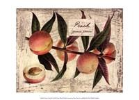 Fresco Fruit IX Fine Art Print