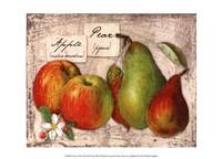 Fresco Fruit X Fine Art Print