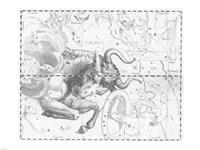 Taurus by Johannes Hevelius Fine Art Print