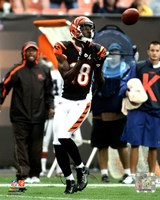 A.J. Green in action 2011 Fine Art Print