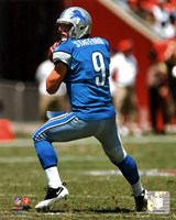 Matthew Stafford 2011 Action Fine Art Print