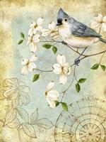 Songbird Sketchbook IV Fine Art Print