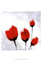 Red Drops V Fine Art Print