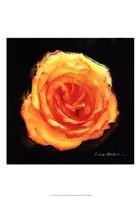 Vibrant Flower II Fine Art Print