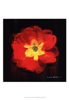 Vibrant Flower IX Fine Art Print
