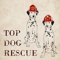 Top Dog Rescue Fine Art Print