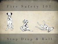 Stop, Drop and Roll Fine Art Print