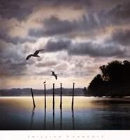 Circling Skies Framed Print